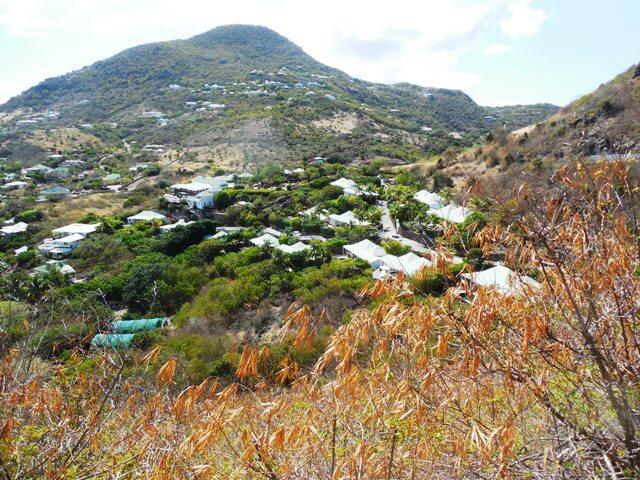 Afternoon photo view of St Barths by Patti Pietschmann